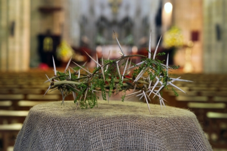 Crown of thorns Stock Photo - 17166510