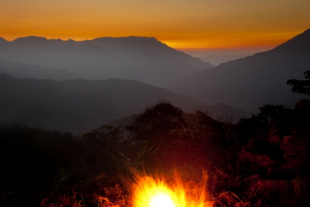 fire wood heat: Nightly landscape with campfire Stock Photo