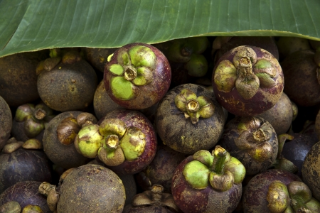 Mangosteen with Banana leaf Stock Photo - 17477717