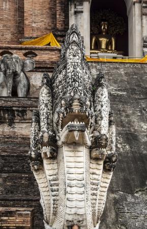 14th century: Five headed dragon  Naga  statue of Wat Chedi Luan in Chiang Mai,Thailand  Construction of Wat Chedi Luang  temple  started in the 14th century