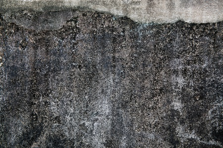 Wall Background, Abstract or Texture  photo
