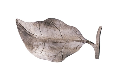 Wood carving of leaf, isolated with clipping paths on white background  photo