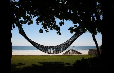Hammock In The Tropical Beach photo