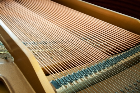 Closeup of grand piano showing the strings, pegs and sound board  Detailed of grand piano inside, parallel strings