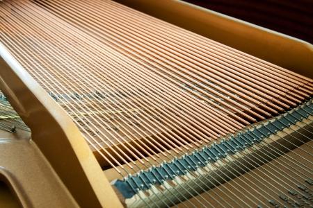 Gros plan d'un piano � queue montrant les cordes, chevilles et carte son d�taill�es de piano � queue � l'int�rieur, cordes parall�les