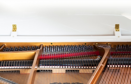 Closeup of white grand piano showing the strings, pegs and sound board  Detailed of grand piano inside, parallel strings photo