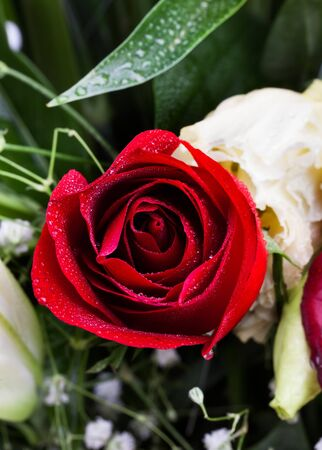 Beautiful red rose with carnation and Gypsophila flowers  photo