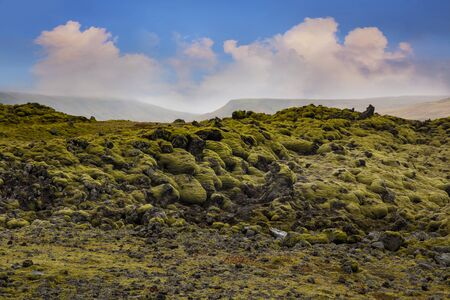 nordic country: Moss, Mossy Lava Rocks at Katla Geopark, Iceland. - Iceland is a Nordic island country