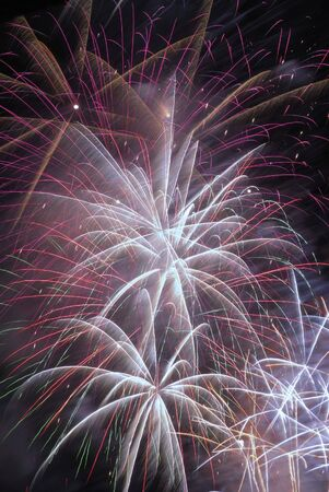guy fawkes: Explosion of fireworks in the night sky