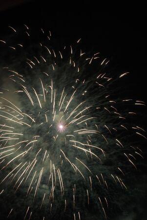 guy fawkes night: Explosi�n de fuegos artificiales en el cielo de la noche