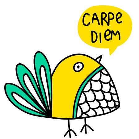 Cute vector illustration with cartoon bird and carpe diem lettering