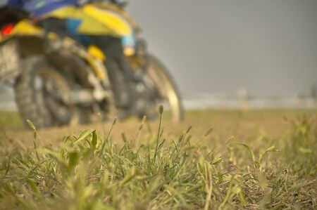 details of grass roots on board a enduro or motocross track, with a blurry crossword on a blurry crossroads crossing a curve