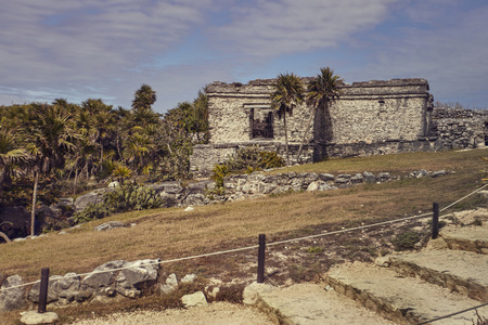 Ruins of Mayan buildings immersed in a green meadow: View of some parts of the Maya complex at Tulum in Mexico Фото со стока