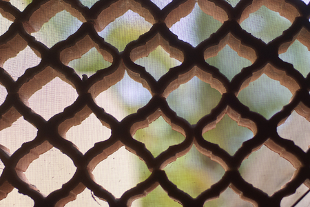 Detail of a lattice from holes with harmonious shapes with blurred background. 免版税图像