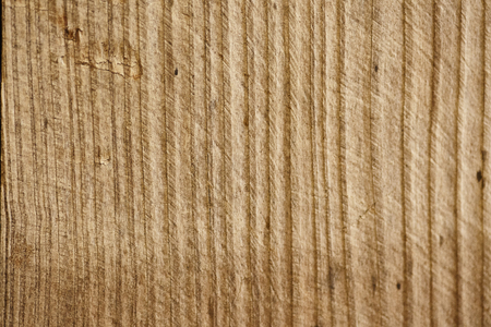 Raw cherry wood surface still to be processed in macro shooting