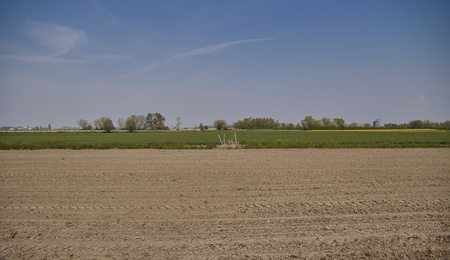 Panorama of an agricultural landscape immersed in the Po valley in Italy, with the newly sown field.