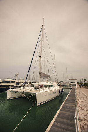 Luxury boats moored in the Port of San Vincenzo in Italy #4