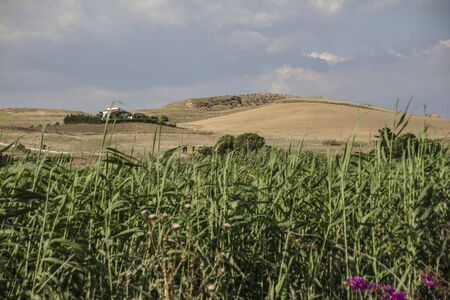 Hilly Sicilian rural landscape during the summer periosa in Marina di Butera Stock Photo