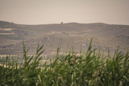 Hilly Sicilian rural landscape during the summer periosa in Marina di Butera Stock Photo