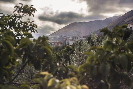 Monreale among the hills: a sicilian landscape
