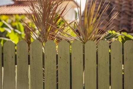 Wooden fence in a tropical Garden