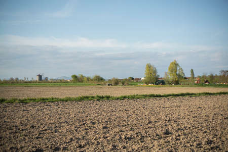 Countryside panorama in the Italian plains in spring Imagens