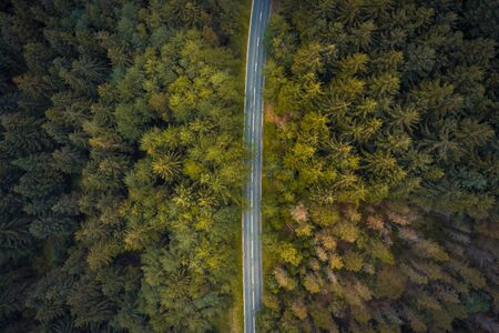 Amazing aerial shot of the trees along the Snake Pass in Peak District National Park, shot in summer of 2019