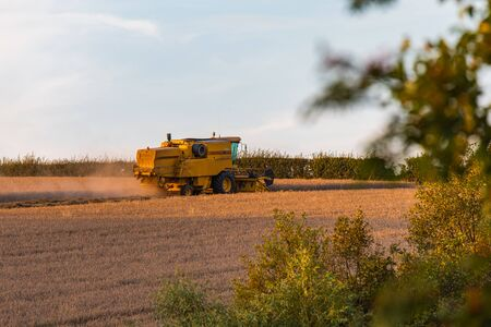 SHEFFIELD, UK - 24TH AUGUST 2019: Side Profile of a New Holland TX32 Combine Harvester working a wheat field during sunset