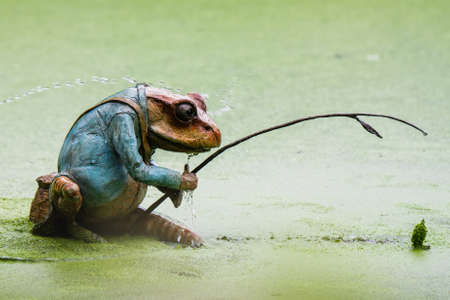 A small frog fishing with a fishing rod ornament in a green lake Reklamní fotografie