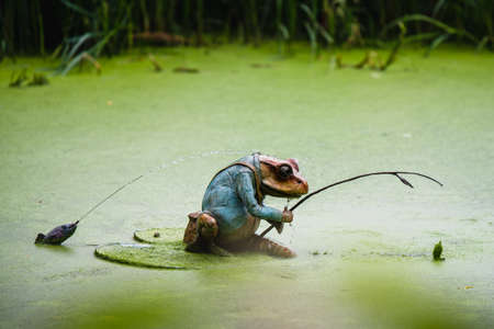 A small frog fishing with a fishing rod ornament in a green lake 免版税图像