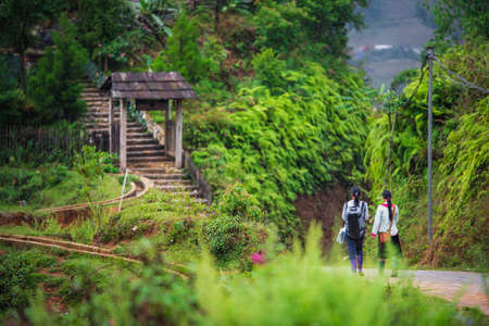 Two girls walking along a small road in Sapa, Northern Vietnam between lush green forest and a stairway with an arch in the background