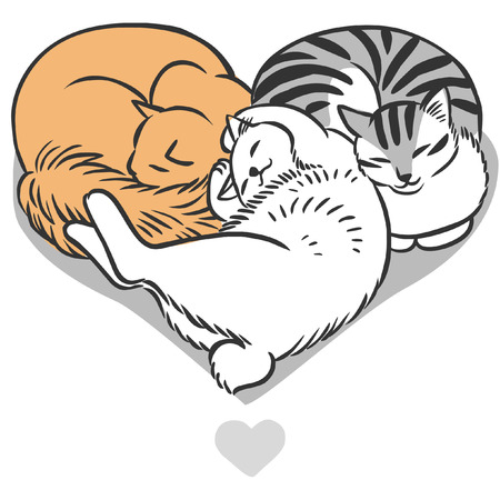 design drawing: Three cats lying in shape of heart. Vector hand drawn illustration