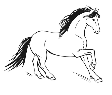 manege: Running horse. Vector hand drawn illustration