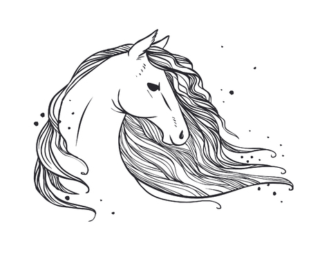 Horses head with long wavy mane. Vector hand drawn illustration on white background may be used as tattoo sketch, t-shirt print and other