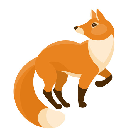Red fox isolated on white background. Vector illustration Illustration