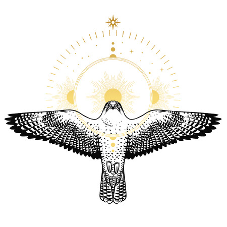 Flying falcon and the halo. Vector hand drawn illustration in boho style