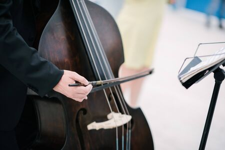 The musician plays the double bass bow close up