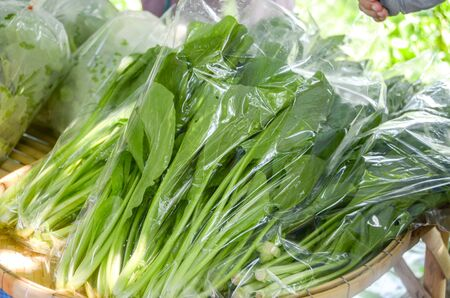 cantonese: Fresh organic vegetables in plastic bag, Canton or Cantonese