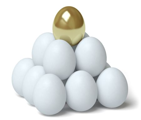 egg photo