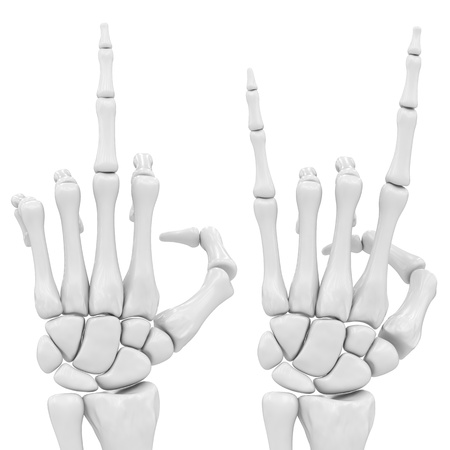 hands off: skeletal hand