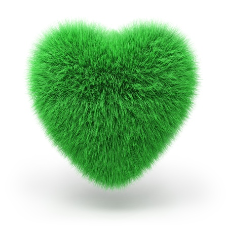 unusual valentine: heart