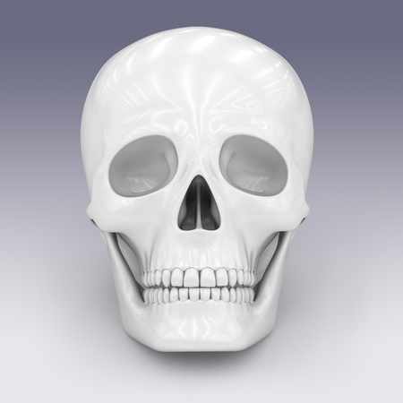eye sockets: skull