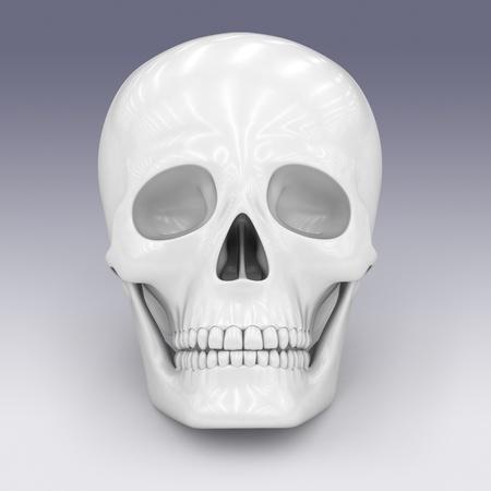 skull Stock Photo - 9215828