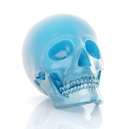 skull Stock Photo - 9295696
