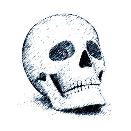 skull Stock Photo - 9691412