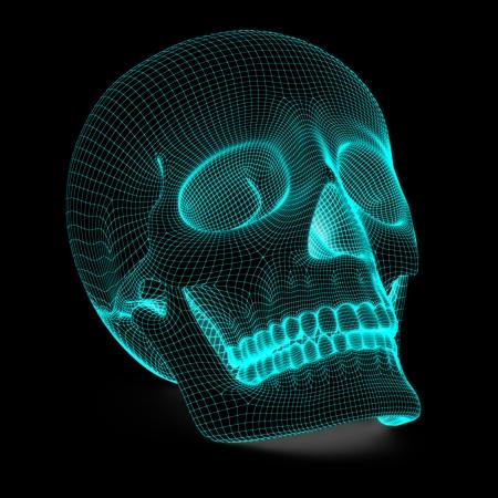wire mesh: Skull