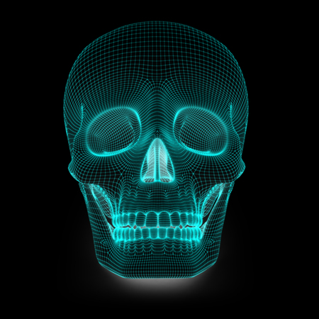 cg: Skull