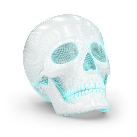 viewport: Skull