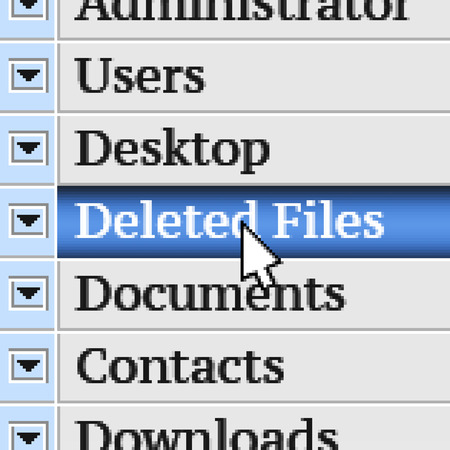 deleted: Deleted Files. My own design of program menu.