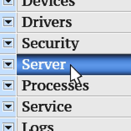 webhosting: Server. My own design of program menu.